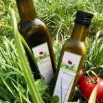Salatsauce Grüne Wiese  100 % Vegan